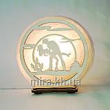 Соляной светильник круглый Джаз пара, фото 2