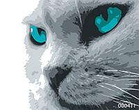 Картина по номерам Кот, цветной холст, 40*50 см, без коробки Barvi