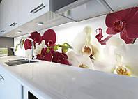 Виниловая наклейка кухонный фартук-скинали 60х300 см ReD Орхидеи бордовые и белые (самоклейка на кухню)