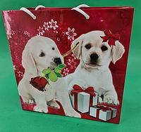 Пакет бумажный подарочный