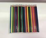 Карандаши цветные 24 цвета  для школьников - Josef Otten, фото 2