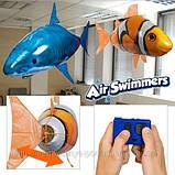Летающая рыба Air Swimmers,рыба Акула - летающие игрушки, фото 3