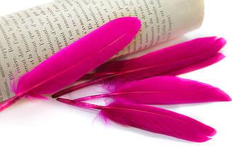 Перья для декора, 30шт. Длина 10-15 см. Цвет Розовый