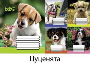 """Тетрадь 12 листов косая Leader """"Щенята"""""""