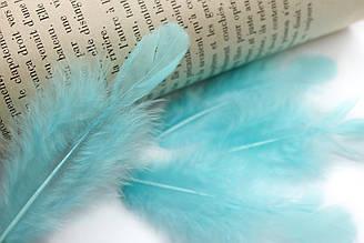 Декоративные перья для рукоделия, 30шт. Длина 7-9 см. Цвет Голубой