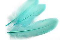 Декоративные перья для рукоделия, 30шт. Длина 17-21 см. Цвет Голубой