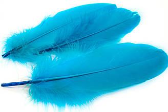 Декоративные перья для рукоделия, 30шт. Длина 17-21 см. Цвет Морской волны