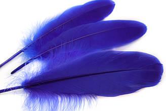 Декоративные перья для рукоделия, 30шт. Длина 17-21 см. Цвет Синий