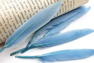 Перья для декора, 30шт. Длина 10-15 см. Цвет Голубой