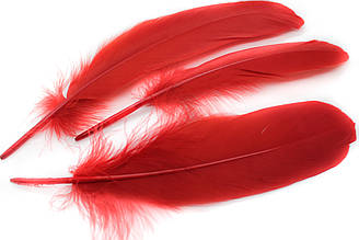 Декоративные перья для рукоделия, 30шт. Длина 17-21 см. Цвет Красный