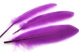 Декоративные перья для рукоделия, 30шт. Длина 17-21 см. Цвет Фиолетовый