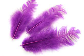 Декоративные перья для рукоделия, 30шт. Длина 7-9 см. Цвет Фиолетовый