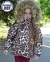Зимняя куртка на девочку - можно комплект, фото 1
