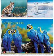 Альбом для малюв. на пруж. 30/120 A4 картон №PB-SC-030-287/Школярик/(9)(63)