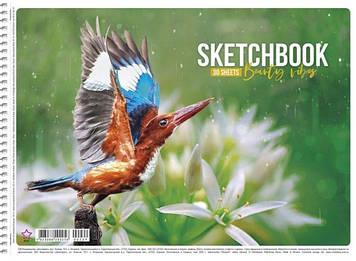 """Альбом для малюв. на пруж. 30/120 A4 """"Star"""" №PB-SC-030-229/Школярик/(9)(81)"""