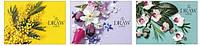 "Альбом для малюв. склейка 30арк. A4 ""Star"" №PB-GB-030-247/Школярик/(15)(75)"