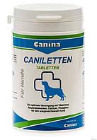 Активний кальцій для собак Canina Caniletten 1000г (500 табл)