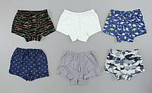 {есть:122 СМ,98 СМ,158 СМ} Трусики-шорты для мальчиков, Артикул: TK4513 [122 СМ]