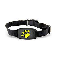 GPS ошейник для собак трекер маячок Pet Tracker Z8, влагозащищённый. Модульная конструкция. Лучшая цена!