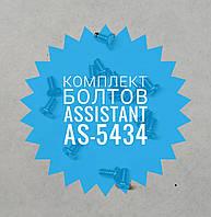 Комплект болтів Assistant as-5434