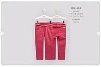 ШР 484 Брюки коттон, р.110 колірL00 червоний, неважливо, неважливо