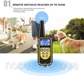 """PETON """"RT-880"""" электронный ошейник для дрессировки и коррекции поведения собак, дальность до 800 метровОшейник"""
