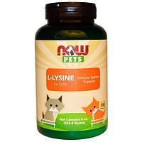 Лизин для кошек L-Lysine Now Foods Now Pets 226,8 г