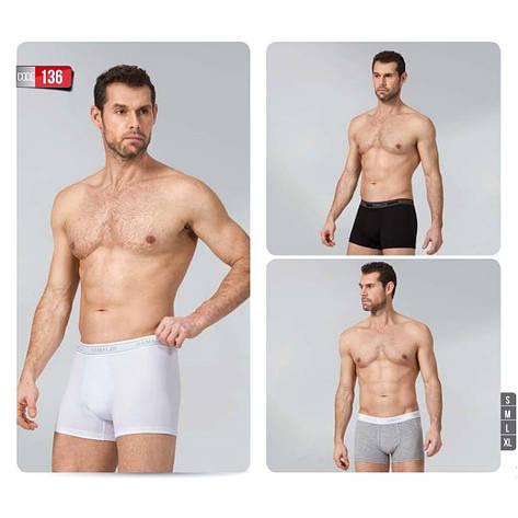 Трусы мужские боксеры NAMALDE 136 серый, S, фото 2