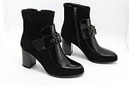 Замшеві черевики Battine B589, фото 4