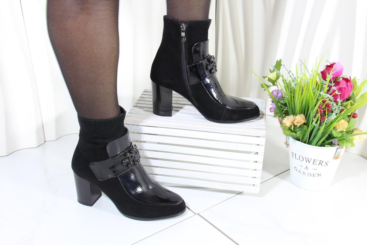 Замшеві черевики Battine B589