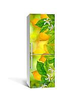 Виниловая наклейка на холодильник Лимоны (пленка самоклеющаяся ПВХ) цитрусы фрукты Желтый 650*2000 мм