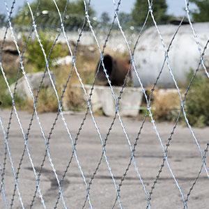 """Колючая сетка """"Пиранья"""" 2.4 х10 колючий забор"""