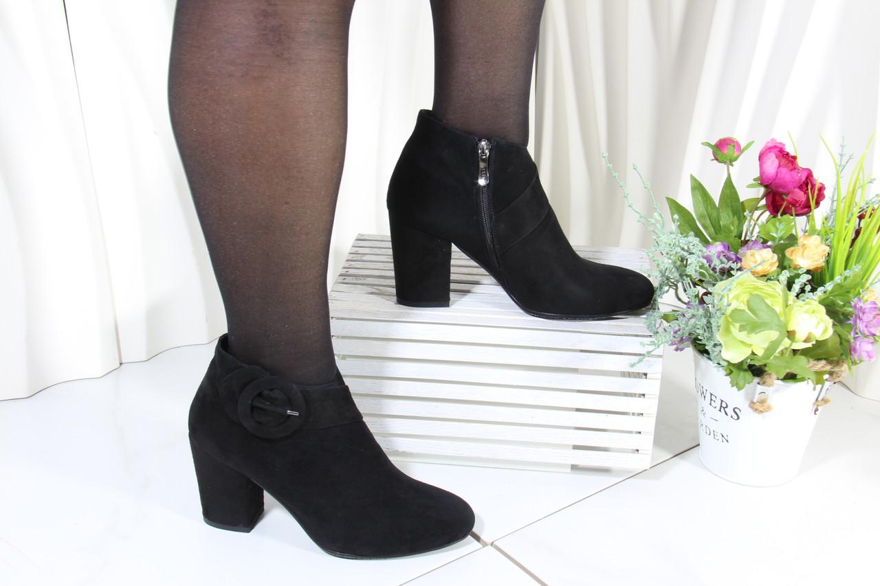 Замшеві черевики Battine B444