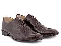 Стильные лаковые туфли в коричневом цвете