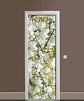 Вінілова наклейка на двері Біла Сакура (плівка самоклеюча ламінована ПВХ) квітучі гілки вишні Зелений 650*2000