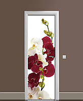 Вінілова наклейка на двері Бордові Орхідеї (плівка самоклеюча ламінована ПВХ) квіти на білому тлі 650*2000 мм