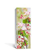 Интерьерная наклейка на холодильник Розовые Цветы вишни виниловая пленка ламинированная ПВХ вишневые Зеленый, фото 1