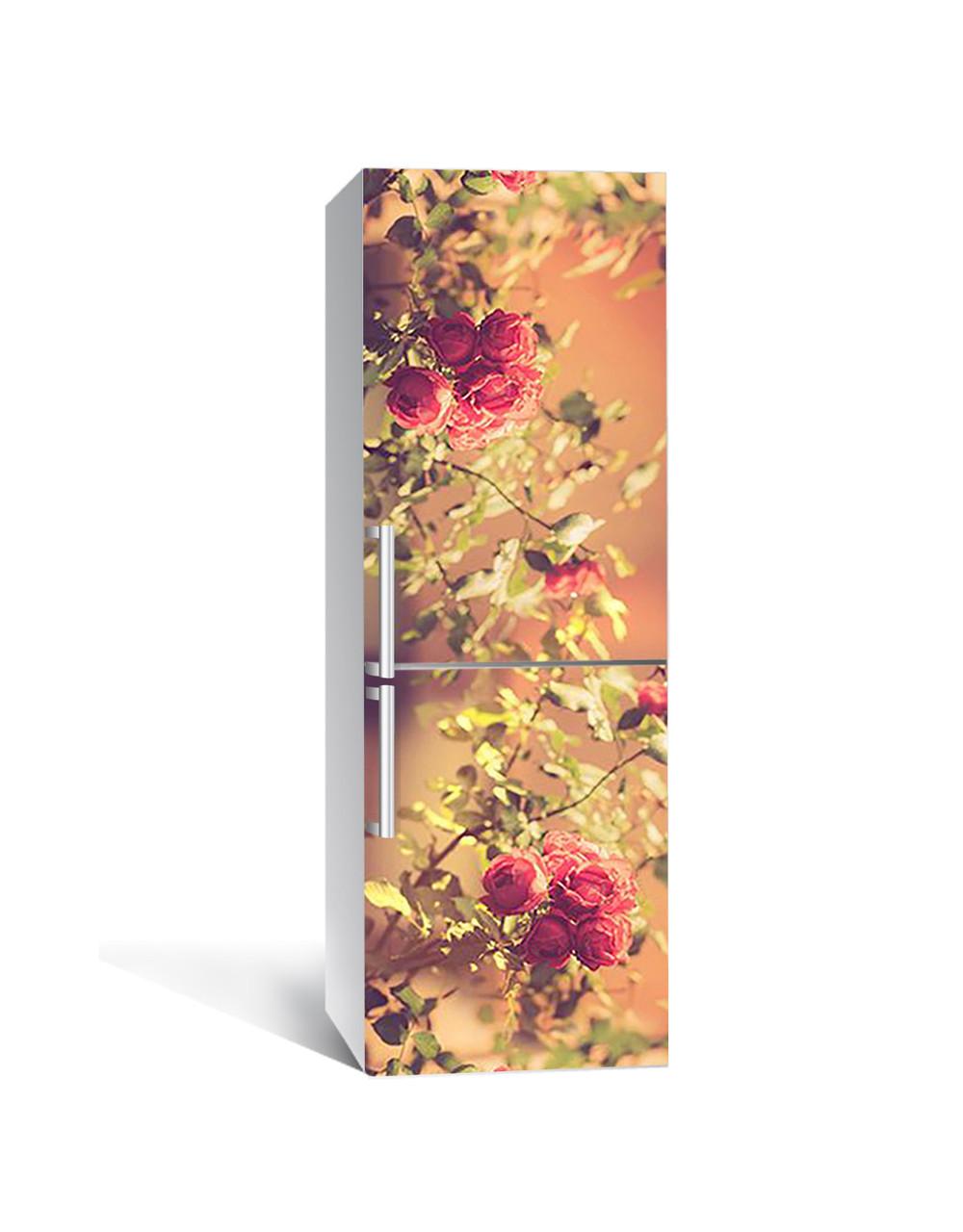 Интерьерная наклейка на холодильник Фото Розы виниловая пленка ламинированная ПВХ сепия кусты цветы Бежевый