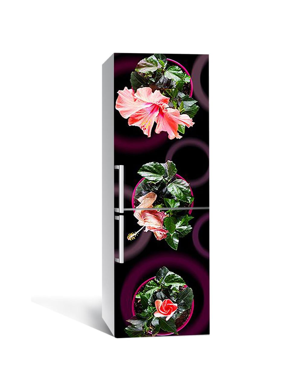 Інтер'єрна наклейка на холодильник Гібіскус ламінована ПВХ квіти в горщиках Коричневий 650*2000 мм