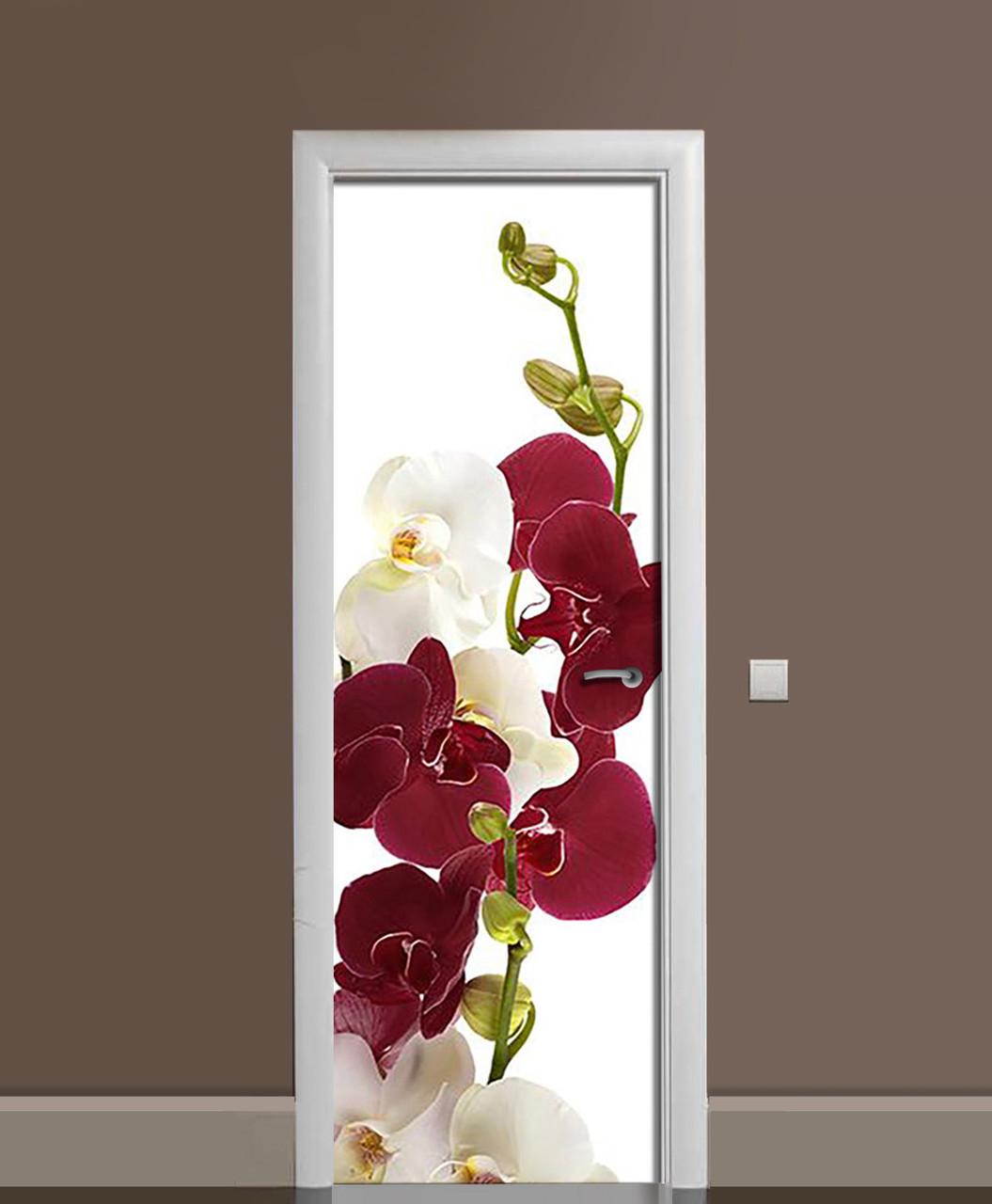 Наклейка на двері Бордові Орхідеї вінілова плівка ламінована ПВХ квіти на білому тлі 650*2000 мм