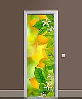 Наклейка на двери Лимоны виниловая пленка самоклеющаяся ламинированная ПВХ цитрусы фрукты Желтый 650*2000 мм