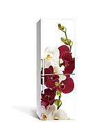 Виниловая 3D наклейка на холодильник Бордовые Орхидеи (интерьерная самоклеющаяся пленка ламинированная ПВХ) цветы на белом фоне 650*2000 мм, фото 1