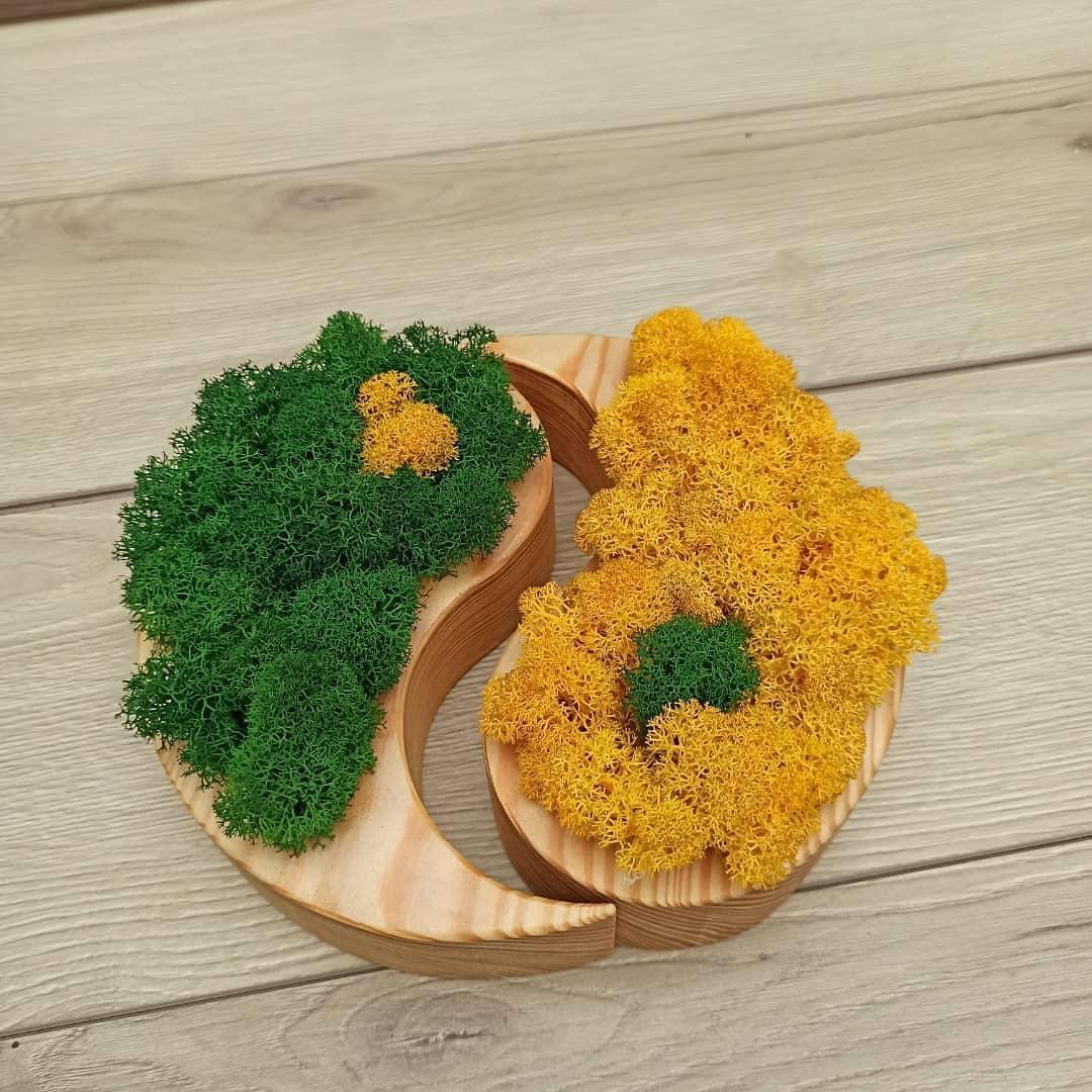 Кашпо ′Інь і янь′ з мохом