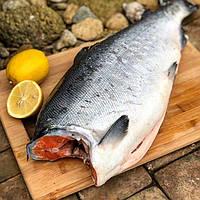Красная рыба кижуч свежемороженая серебристый  лосось
