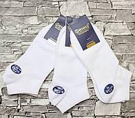 Носки  мужские стрейч ФА002-4 (упаковка 10 пар)Белый