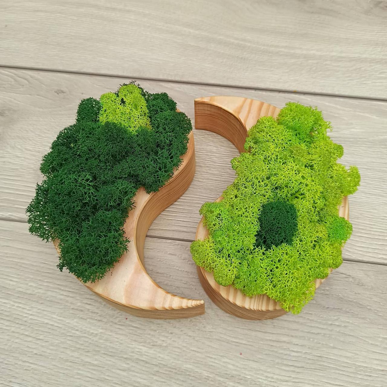 """Дерев'яне кашпо ′Інь і янь"""" з мохом"""