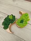 """Дерев'яне кашпо ′Інь і янь"""" з мохом, фото 7"""