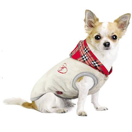 Жилет ЛУИ Pet Fashion для собак, XS, фото 2