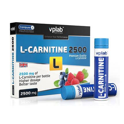 L-карнітин VP Lab L-Carnitine 3000 мл 7х25, фото 2