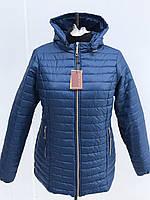 Женская демисесонная куртка на синтепоне с капюшоном больших размеров в синем цвете 54-70размеры